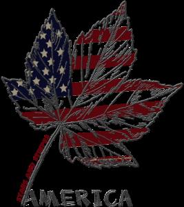 树叶,美国国旗