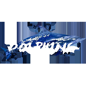 X_Cripic_201808101614