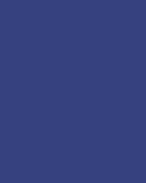 野生动物鹿