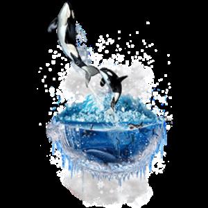 寒冰半岛鲸鱼