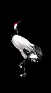 水墨丹顶鹤